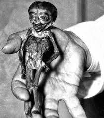 L'Atta Boy dans la main de Charles Fort