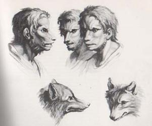 Gravures de Charles Lebrun