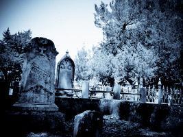 Le vieux cimetière de St. Augustine