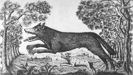 Loup-garou et chien