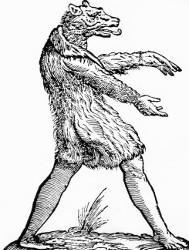loup-garou-hexham