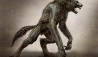Les Loups-Garous de Sibale