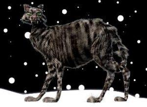 Yule, le Chat de Noël