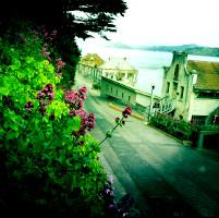 Fleurs Alcatraz1920