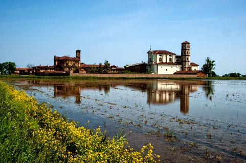 L'abbaye de Lucedio