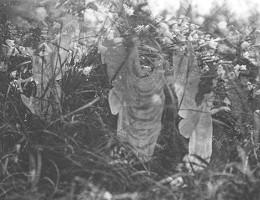 Dernière Photo des Fées de Cottingley