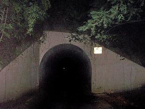 Le Pont de l'Homme-Lapin de Nuit