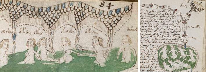 Femmes dans un Bassin